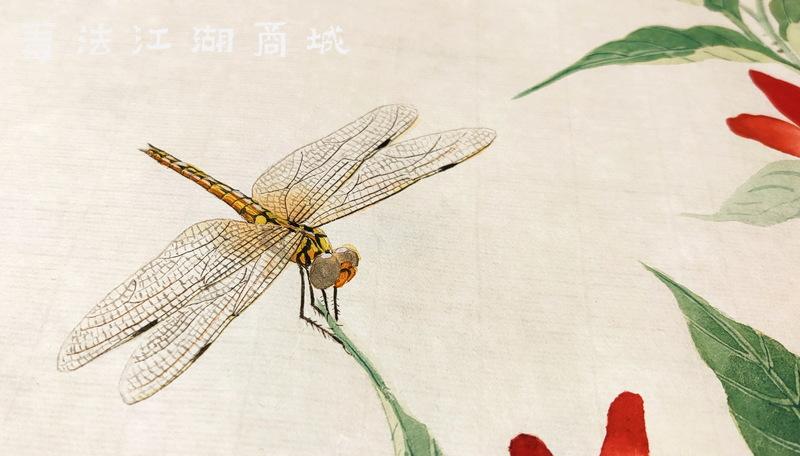 蜻蜓2.jpg