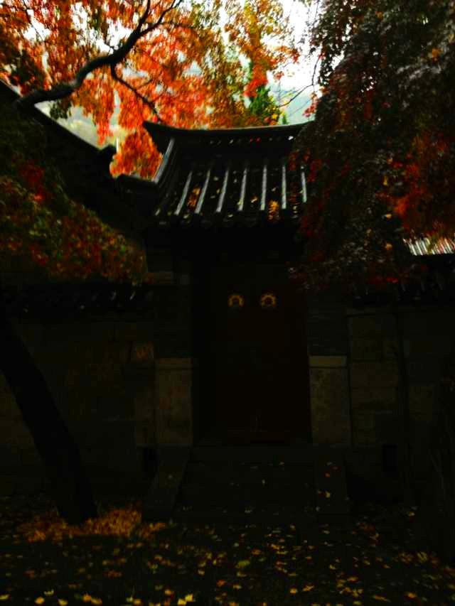 青岛03.jpg