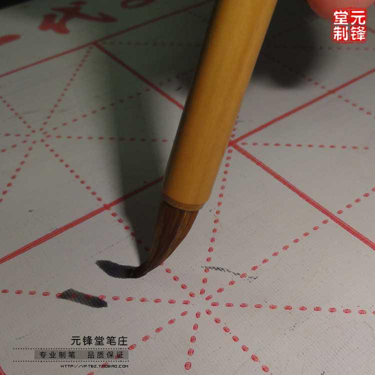 小兰竹7504.jpg